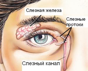 Воспаление слезных проток может быть причиной болезни