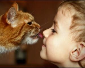 Домашние животные - источники заражения глистами