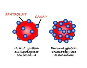 Гликированный гемоглобин