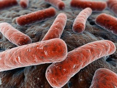Бактериальная инфекция